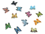 Mini butterfly collection