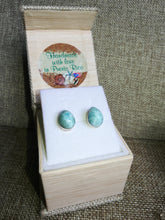 Drop shaped AAA grade Larimar studs