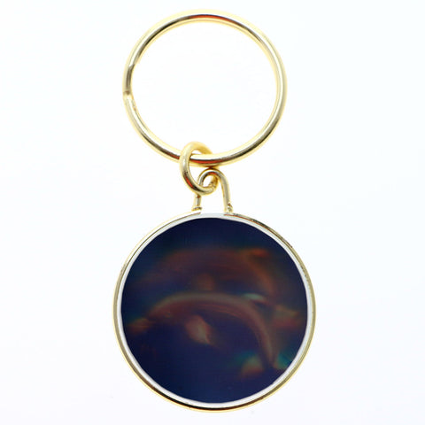 Dolphin Hologram Split-Ring-Keychain Gold-Tone/Clear
