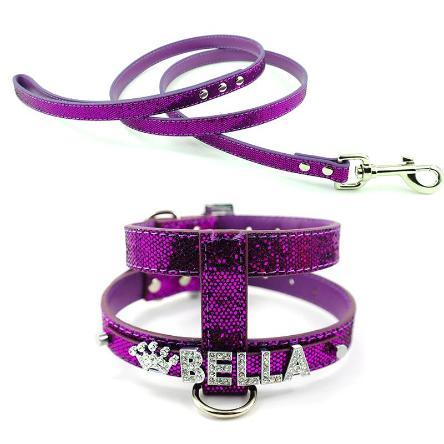 Bling-Bling Personalized  Dog Harness & Lead Set - essential.merch