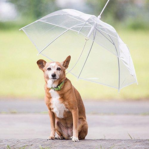 Dog Umbrella - essential.merch