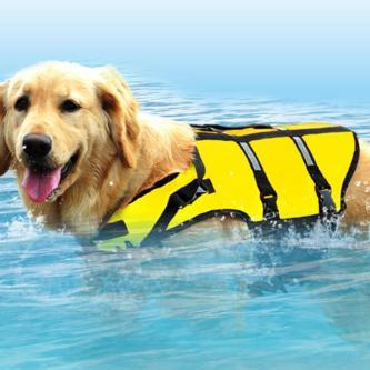 Super Swimmer Dog Life Vest - essential.merch