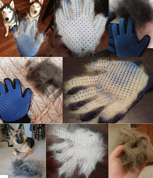 Sheddy: Dog & Cat Grooming Gloves - essential.merch