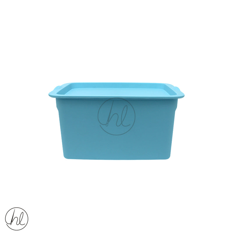 SMALL STORAGE CONTAINER (ABY-3513)