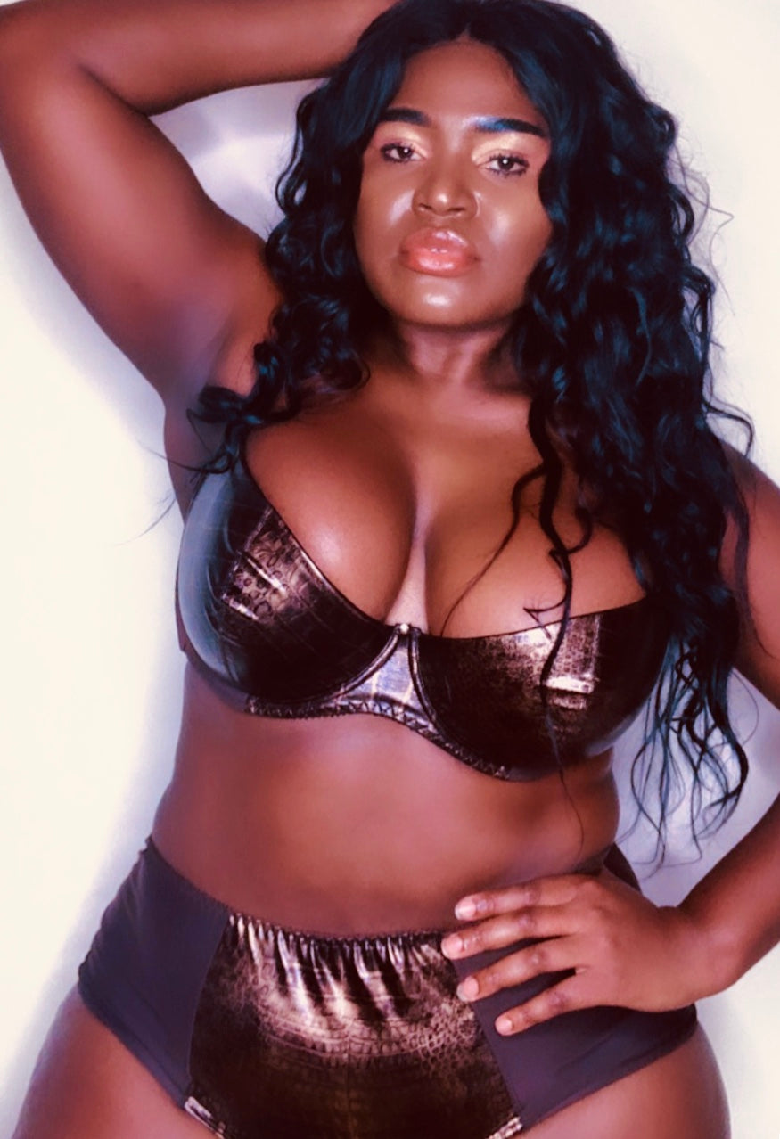 Chocolate Brown Plus Size Bra