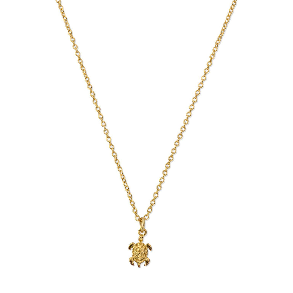 Sterling Silver Tiny Sea Turtle Necklace with Gold Plating