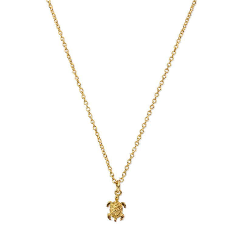 Sterling Silver Tiny Sea Turtle Necklace in Gold