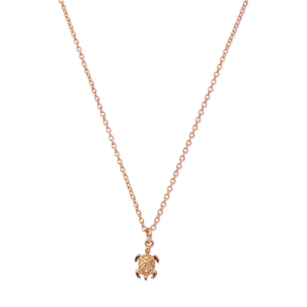 Sterling Silver Tiny Sea Turtle Necklace in Rose Gold