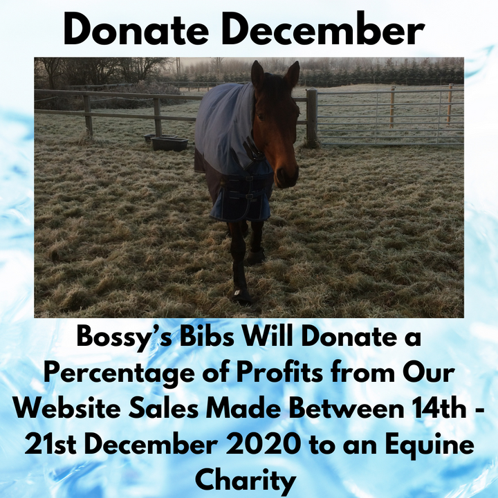 Donation December with Bossy's Bibs