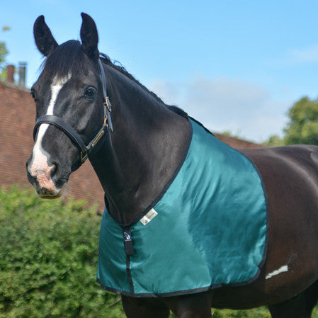 horse bib in green fabric for prevention and cure of hair loss on shoulders and withers caused by rug rubs