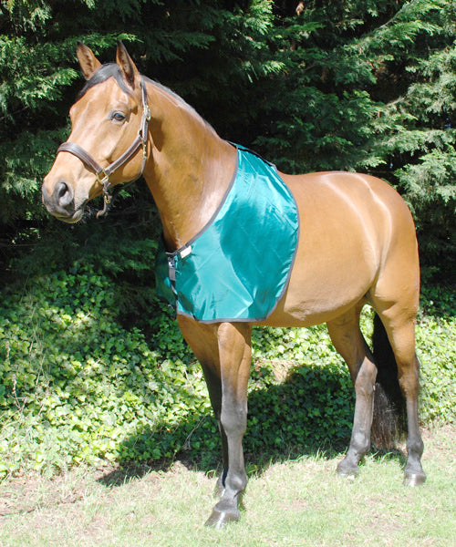 Bossy's Bib in green fabric for prevention and cure of hair loss on shoulders and withers caused by rug rubs