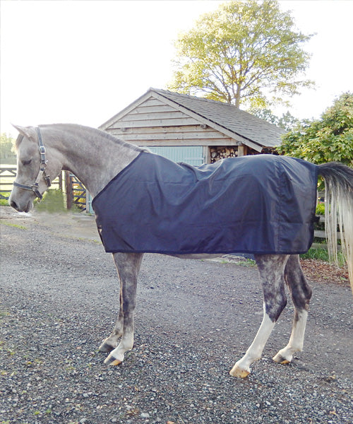 Rug designed with cutaway neck for Arab Horses, silky layer protects horses shoulders, chest and wither from rug rubs, allows rubbed areas to regrow.
