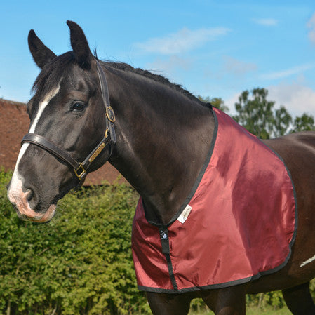 horse bib in Burgundy fabric for prevention and cure of hair loss on shoulders and withers caused by rug rubs