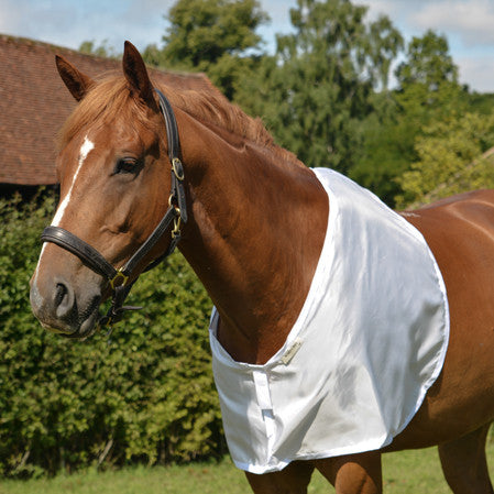 horse bib in white fabric for prevention and cure of hair loss on shoulders and withers caused by rug rubs