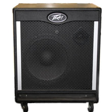 Peavey Tour Series 115 Speaker, this is Pre-Owned Item #323877J