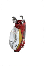 Golf Clubs Ping Eye Irons & Bag, this is Pre-Owned Item #271597A