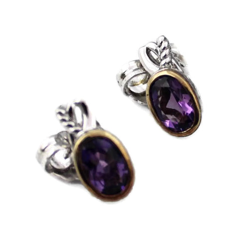 Colore Sg Sterling Silver and 18K Yellow Gold Amethyst Earrings,New item #LZE249-AM