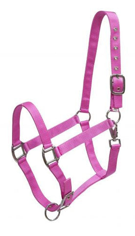Showman 3 Ply average horse size adjustable halter
