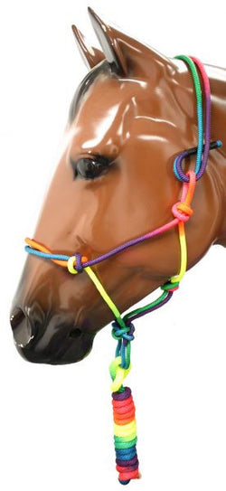 "3/8"" Rainbow colored knotted cowboy knot halter with 5/8"" X 8' matching lead SH722755"