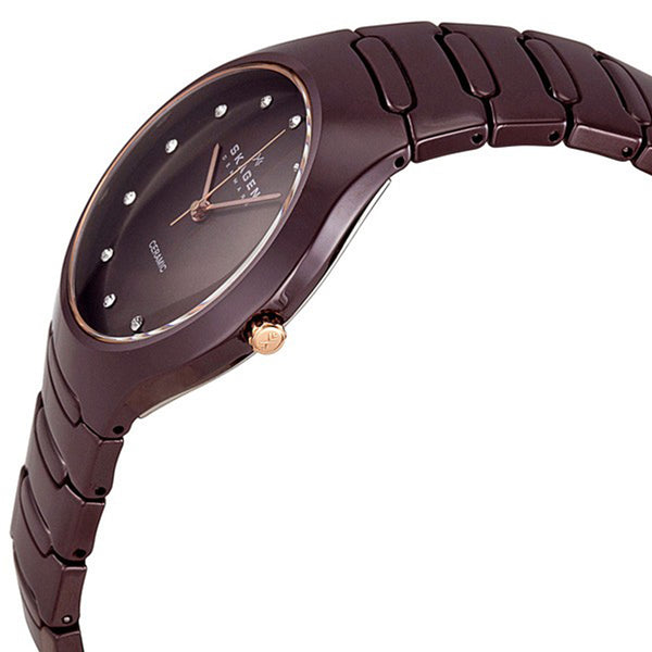 Skagen Ladies' Watch 817SDXCR