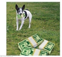 Doggie Dollars Dog Toy