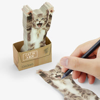 Cat In A Box - Sticky Notes
