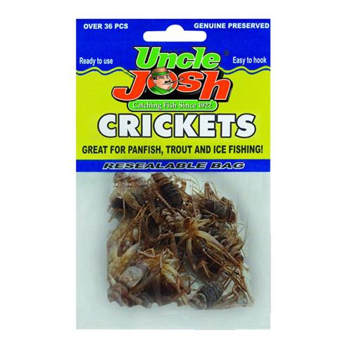 Uncle Josh Preserved Crickets - Natural