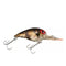 Storm Original Wiggle Wart Phantom Green Crawfish Hard Baits