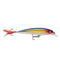 Rapala X-Rap 10 / Purple Gold Hard Baits