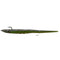 "Reaction Strike Striper Candy 12"" / Zucchini Soft Baits"