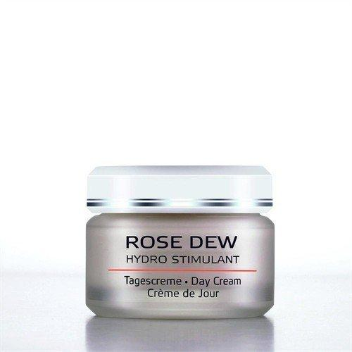 Rose Dew Day Cream Personal Care AnneMarie Borlind of Germany  (10030546371)