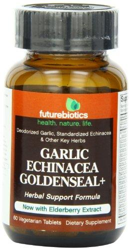 Garlic Echinacea Goldenseal Plus Health & Wellness/Antioxidants/Garlic Futurebiotics  (10030949955)