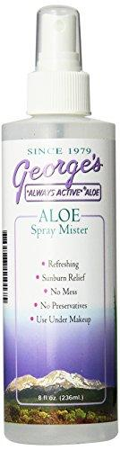 Spray Mister Personal Care Georges Aloe  (10030978819)