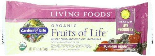 Organic Fruits of Life Food & Snacks/Spreads & Butters Garden of Life  (10030965443)