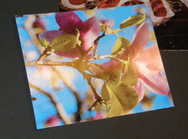 Blank Printable Photo Gloss Note Cards
