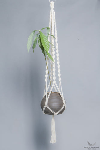 Plant hanger in Macrame holding a pot with a plant - Cream color- Model 01 - studio photo