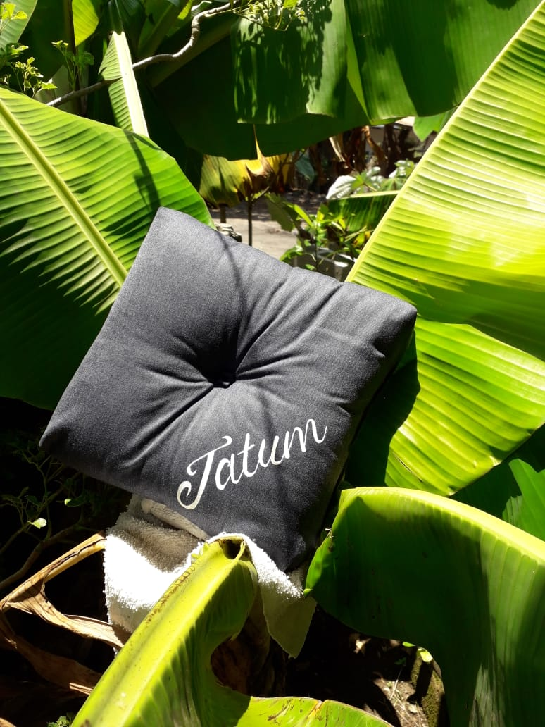 handmade cushion with a handpainted name (Tatum)