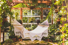 Yucatan hammock in a green house - horizontal picture