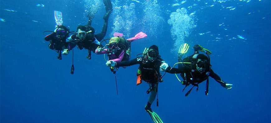 A List of Scuba Diving Essentials: the Gear You Will Need