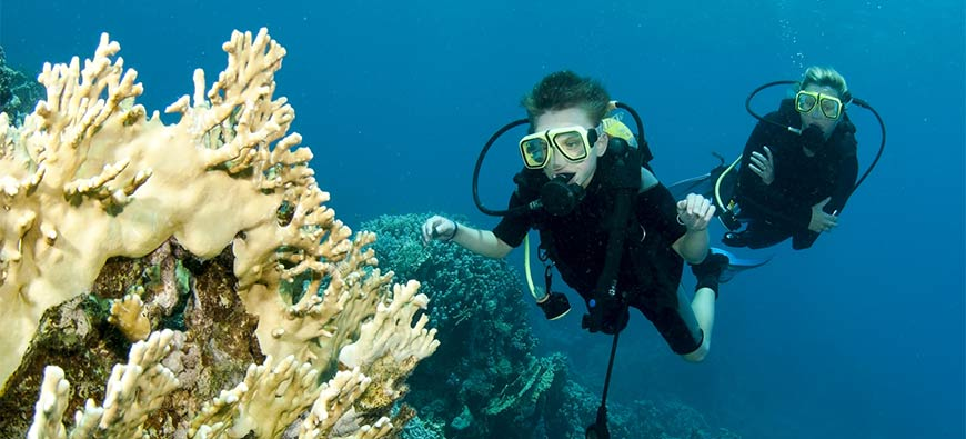What Is Scuba Diving? Basics Your Need to Know