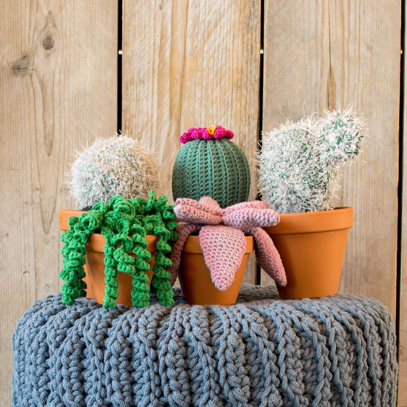 CuteDutch Haakpatroon Cactus en Plantjes