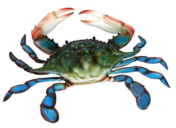 Maryland Blue Crab - Simple Pleasures ~ Bountiful Treasures