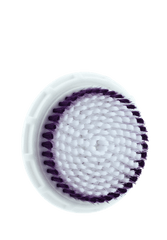 White Body Brush