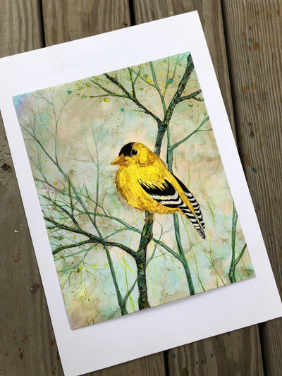 Goldfinch - Prints