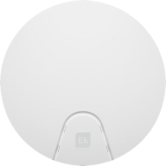 AP 300 LP Wireless Access Point