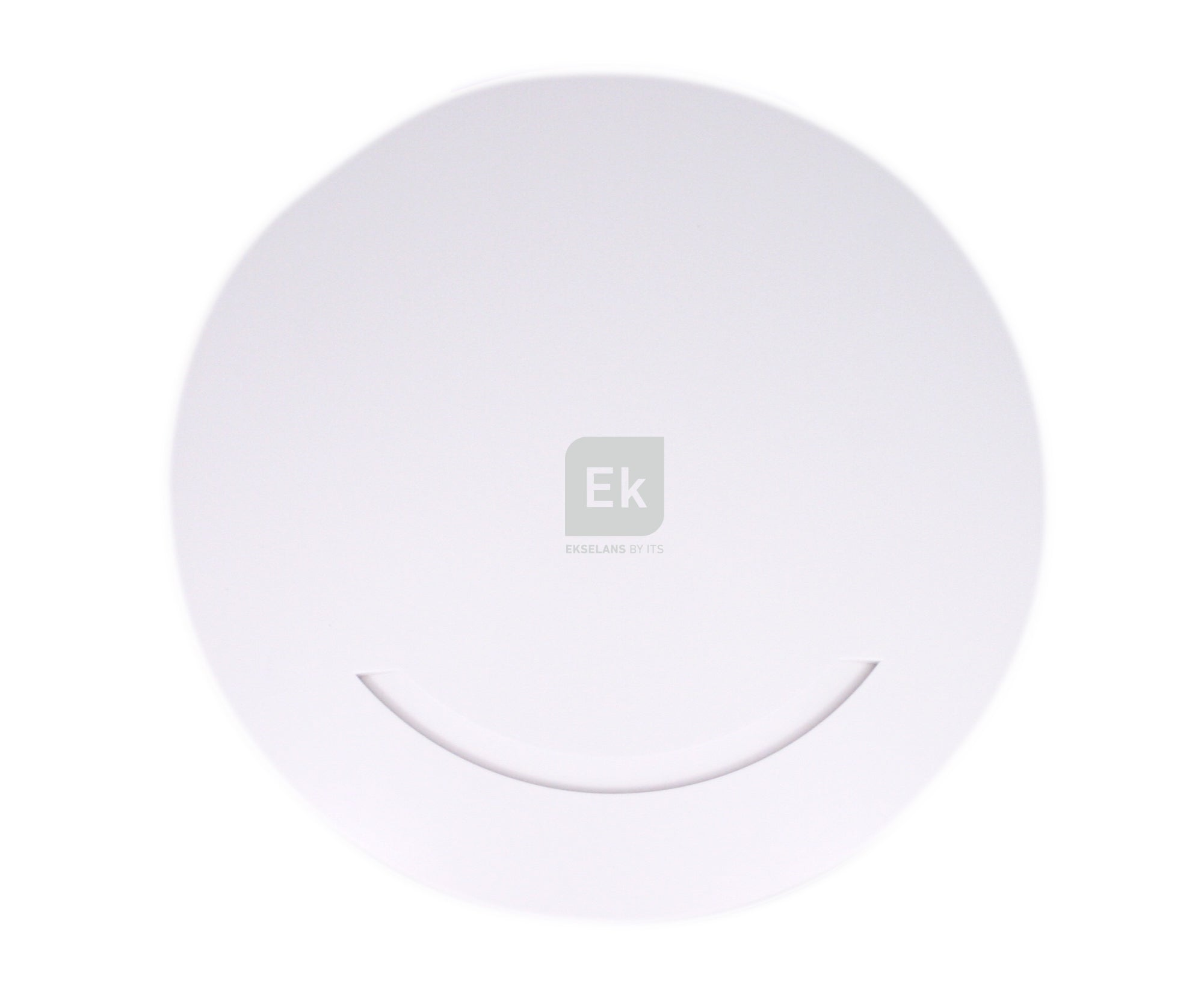 AP 300 Wireless Access Point
