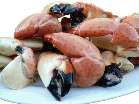 5 Lb. Colossal Florida Stone Crab Claws