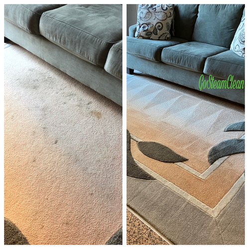 One Room Carpet Cleaning