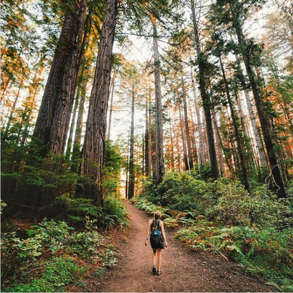 Sundays are for getting lost in the woods #outsidefresh