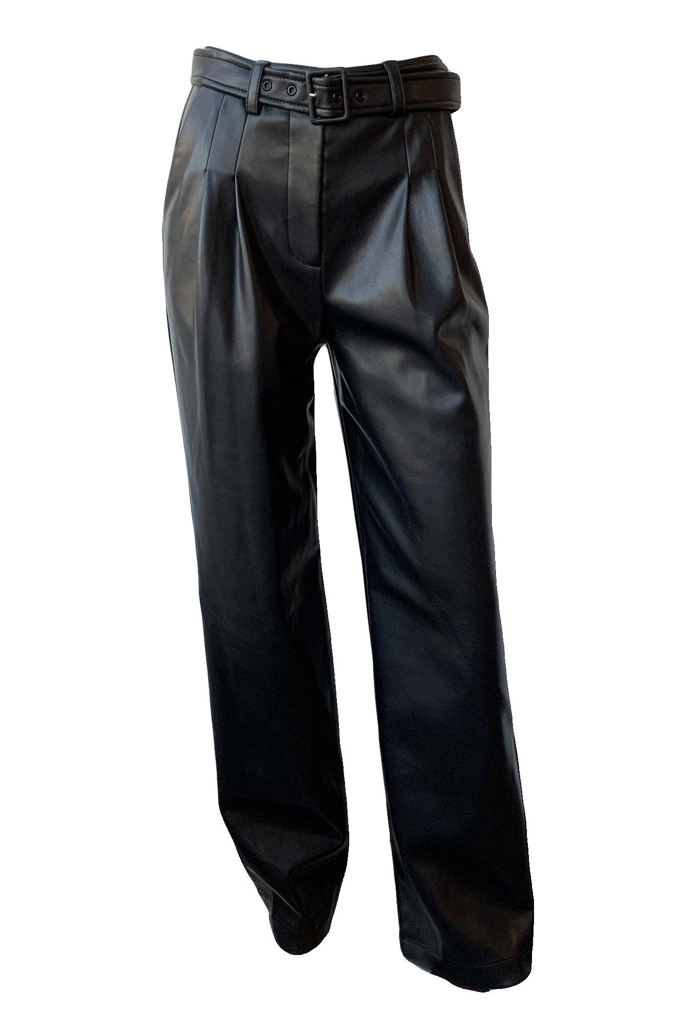 Delaney Vegan Leather Wide Leg Pants